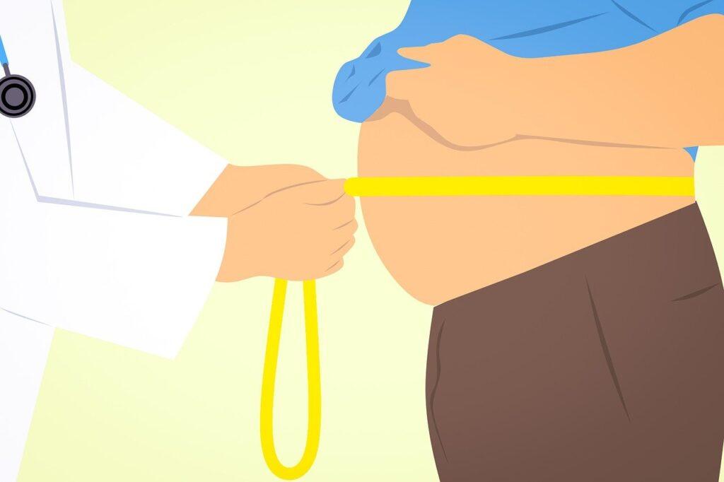 cintura gorda